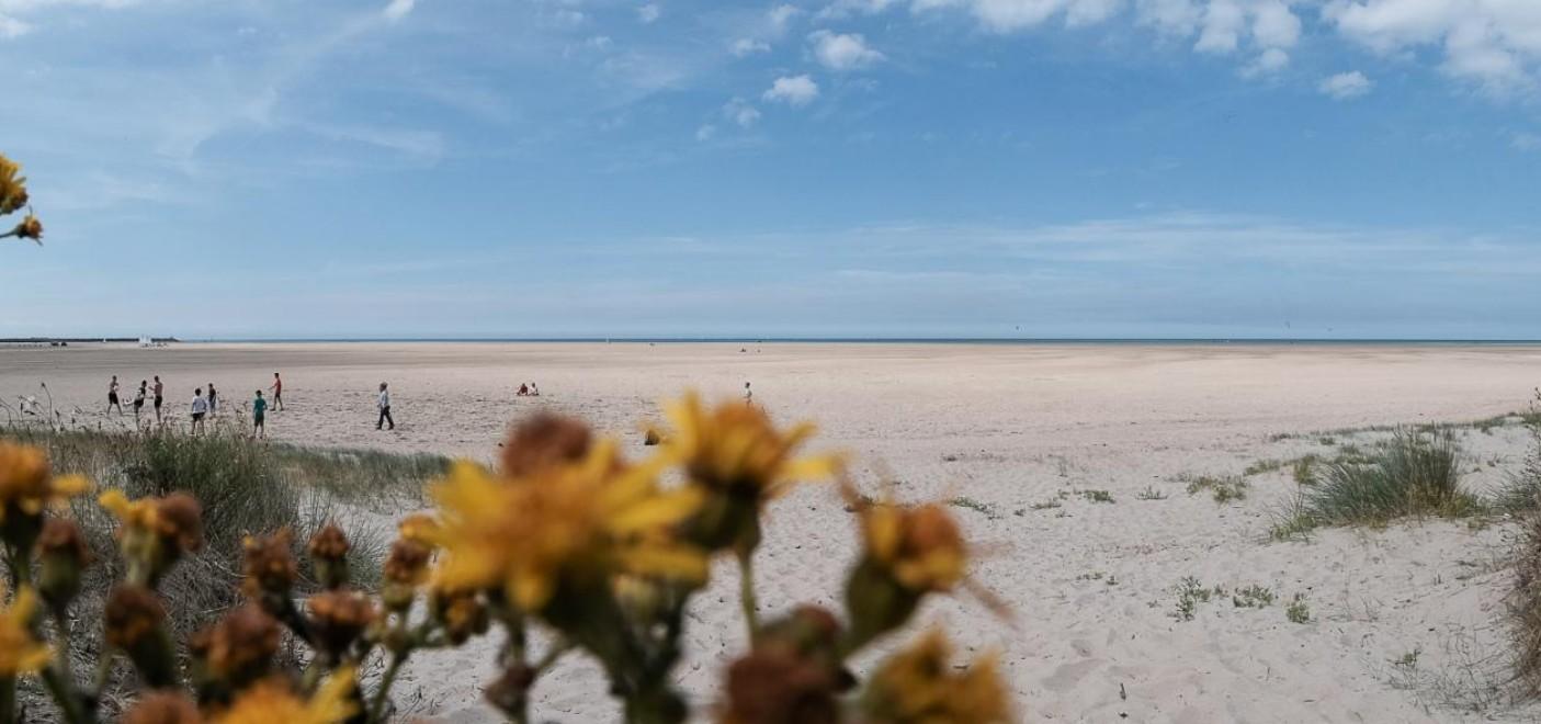 Camping Des Dunes-plage-Les Pieds dans l'Eau 2