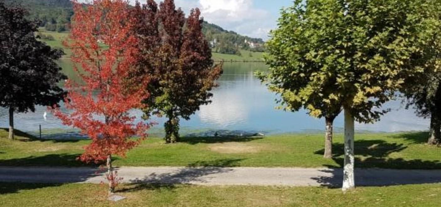 Camping du Lac du Lit du Roi-lac-Les Pieds dans l'Eau 2