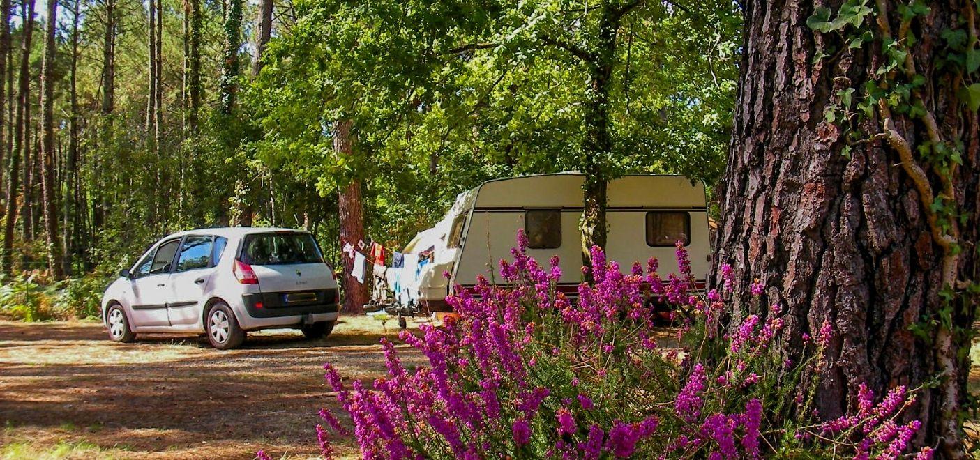 Camping La Calède-Emplacements fleuris-Les pieds dans l'eau