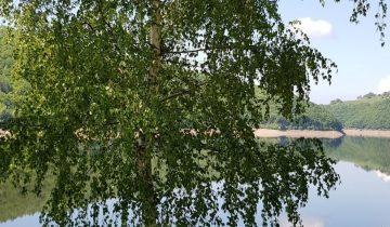 Camping La Source-Lac de Sarrans-Les Pieds dans l'Eau 2