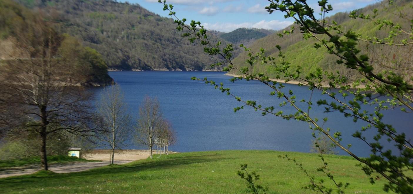 Camping La Source-Lac de Sarrans-Les Pieds dans l'Eau 4