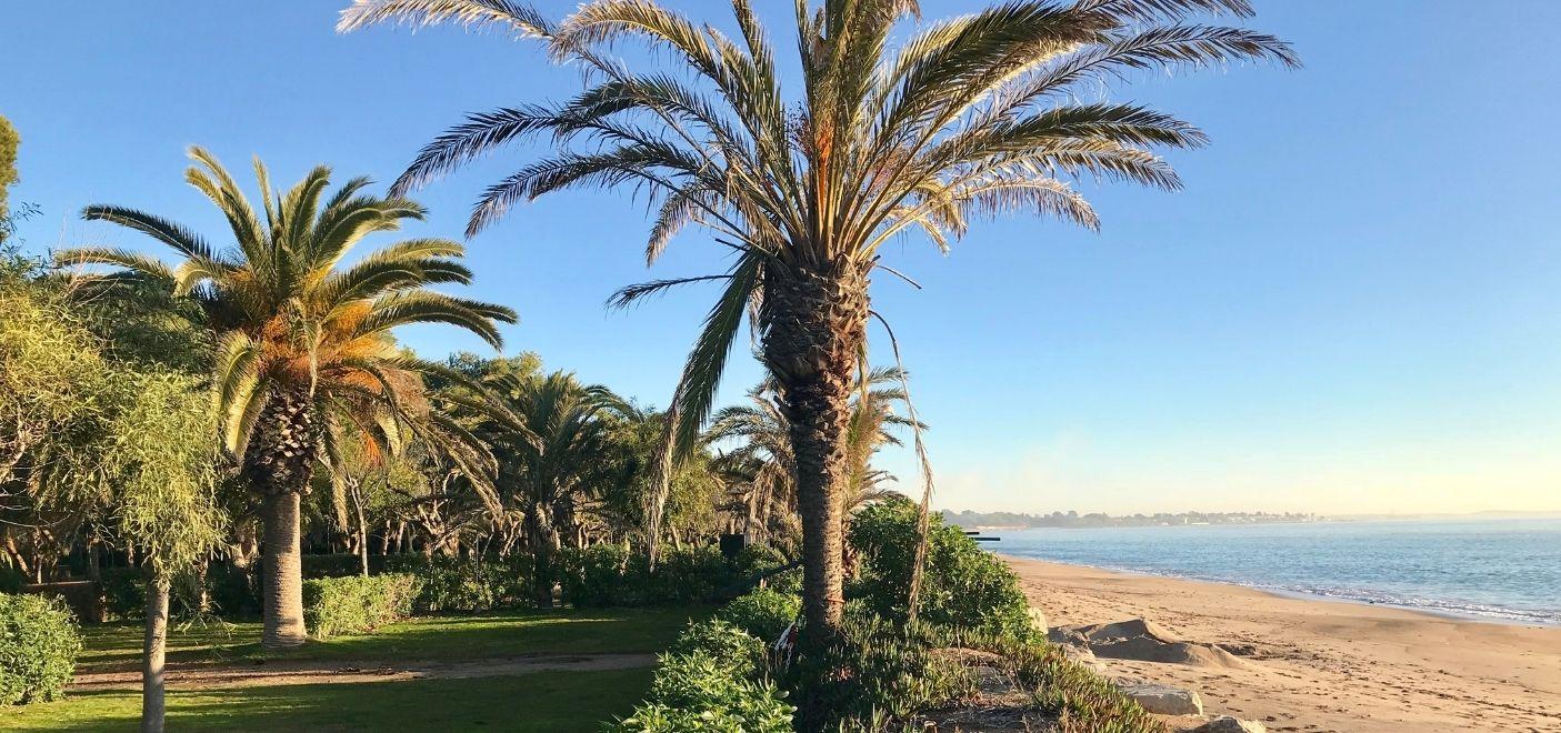 Camping La Torre Del Sol-palmiers et vue sur la mer-Les Pieds dans l'eau