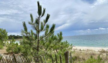 Camping Le Helles-plage-Les Pieds dans l'Eau 3