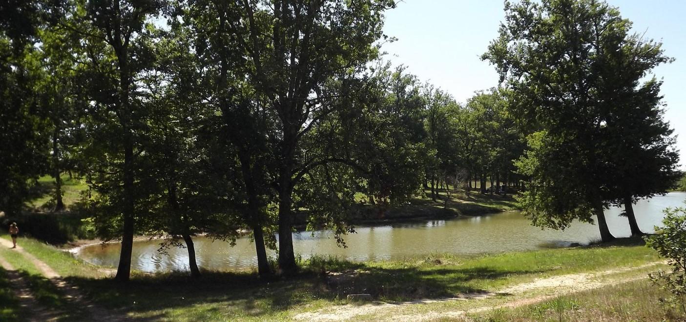 Camping Le Paradou-étang de pêche-Les Pieds dans l'Eau 2