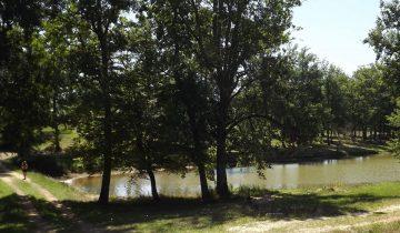 Camping Le Paradou-étang de pêche-Les Pieds dans l'Eau