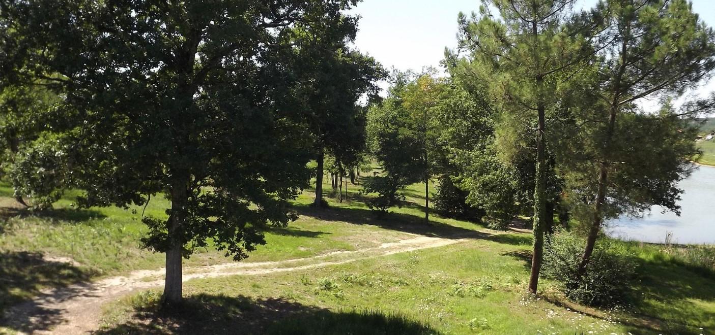 Camping Le Paradou-promenade en bord d'un étang de pêche-Les Pieds dans l'Eau