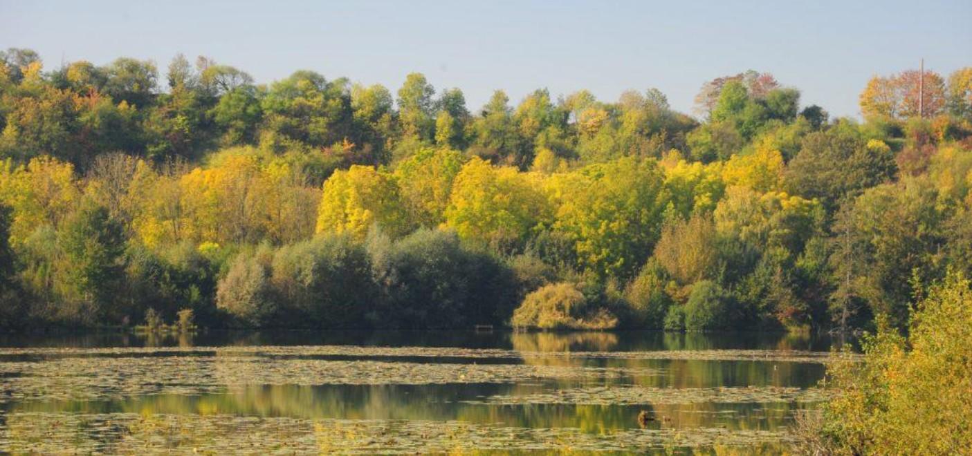 Camping Les Puits Tournants-étang-Les Pieds dans l'Eau