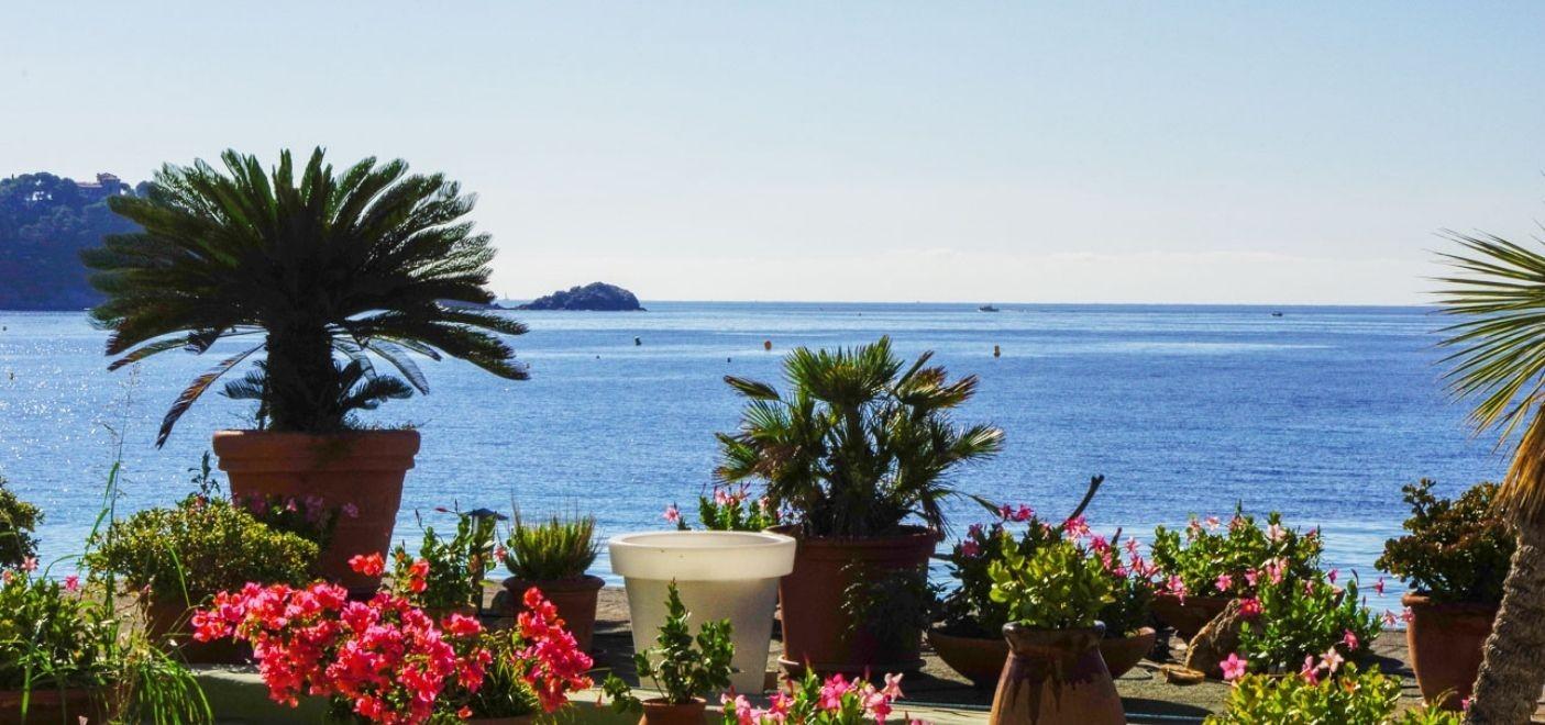 rand Hotel Moriaz-toit fleuri vue mer-Les Pieds dans l'Eau