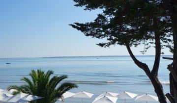 Hôtel L'Albatros-terrasse restaurant vue mer-Les Pieds dans l'eau