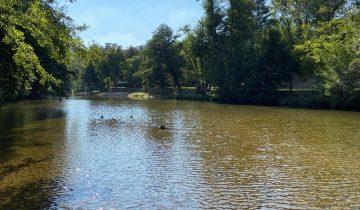 Les Pieds Dans L'eau : Camping Salendrinque Riviere 1