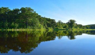 Les Pieds Dans L'eau : Lac Negenou - Agen - vue lac