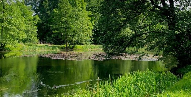 Les Pieds Dans L'eau : Lac Negenou - Agen - Lac