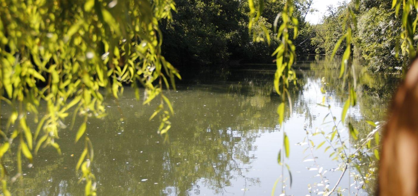 Camping Dordogne Verte-vue sur la Dronne-Les pieds dans l'eau