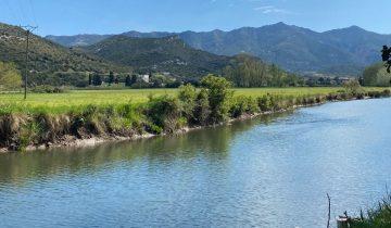 Camping La Pinède -camping nature-Les pieds dans l'eau