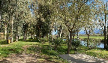 Camping La Pinède -emplacements bord de rivière-Les pieds dans l'eau